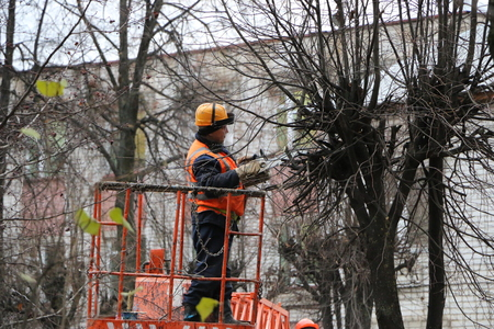 YOSHKAR-OLA, RUSSIA - NOVEMBER 8, 2017: Workers in helmets and orange waistcoats spend seasonal autumn pruning of trees in the city of a chainsaw