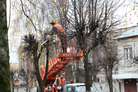 YOSHKAR-OLA, RUSSIA - NOVEMBER 8, 2017: Workers in helmets and orange waistcoats spend seasonal autumn pruning of trees in the city of a chainsaw Stock Photo - 89300810