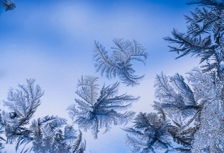 Beautiful  ice pattern on window in winter. fabulous Frosty winter pattern at  glass. Stock Photo