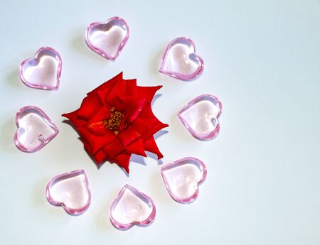 small blooming red rose with glass pink hearts and various marshmallows on white background.