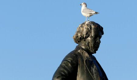 Ottawa, Canada. November 14th 2016 - Seagull on head of Thomas DArcy McGee Statue Thomas DArcy McGee Parliament Hill City of Ottawa Ontario Canada at the Parliament Hill City of Ottawa