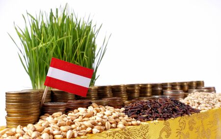Austria flag waving with stack of money coins and piles of wheat and rice seeds Stock Photo