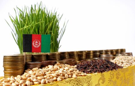Afghanistan flag waving with stack of money coins and piles of wheat and rice seeds
