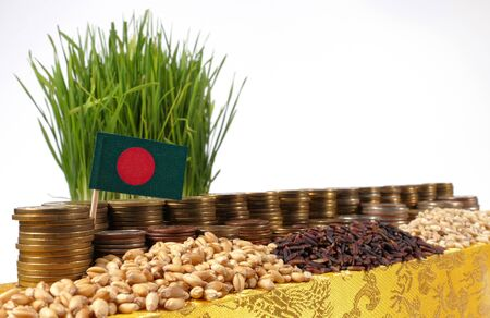 Bangladesh flag waving with stack of money coins and piles of wheat and rice seeds