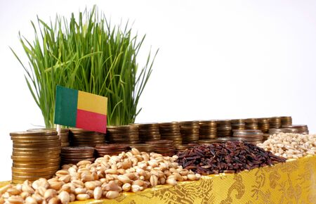 Benin flag waving with stack of money coins and piles of wheat and rice seeds
