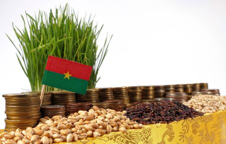 Burkina Faso flag waving with stack of money coins and piles of wheat and rice seeds Stock Photo