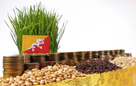 international crisis: Bhutan flag waving with stack of money coins and piles of wheat and rice seeds
