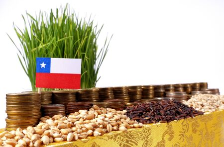 Chile flag waving with stack of money coins and piles of wheat and rice seeds