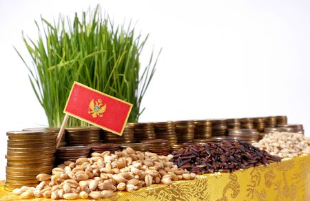 Montenegro flag waving with stack of money coins and piles of wheat and rice seeds