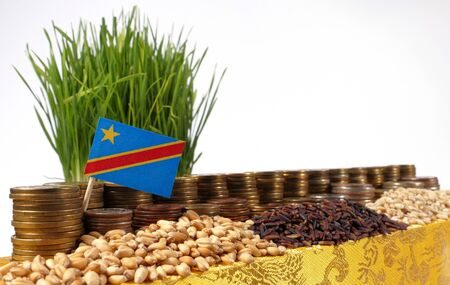 international crisis: Democratic Republic of the Congo flag waving with stack of money coins and piles of wheat and rice seeds Stock Photo