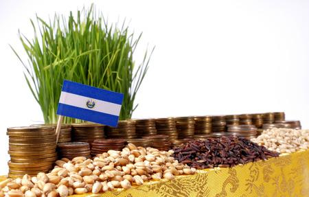 bandera de el salvador: El Salvador flag waving with stack of money coins and piles of wheat and rice seeds Foto de archivo