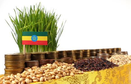 national flag ethiopia: Ethiopia flag waving with stack of money coins and piles of wheat and rice seeds Stock Photo
