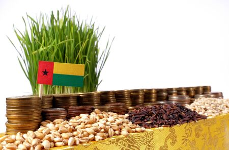 Guinea Bissau flag waving with stack of money coins and piles of wheat and rice seeds