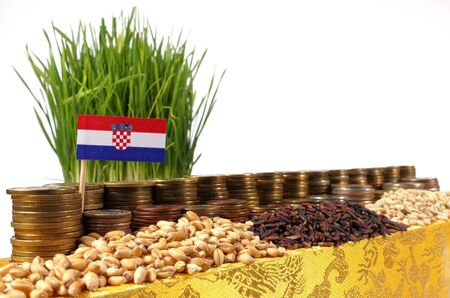 bandera croacia: Croatia flag waving with stack of money coins and piles of wheat and rice seeds