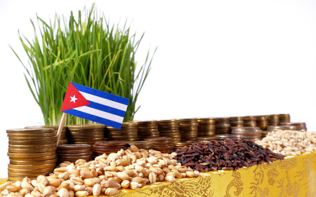 Cuba flag waving with stack of money coins and piles of wheat and rice seeds Stock Photo