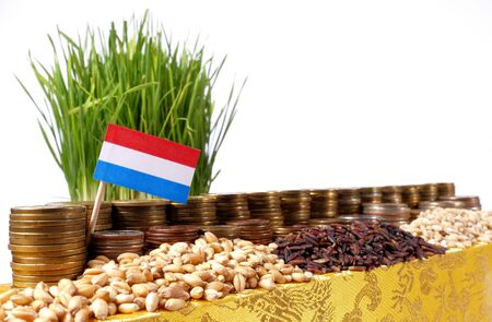 Luxembourg flag waving with stack of money coins and piles of wheat and rice seeds