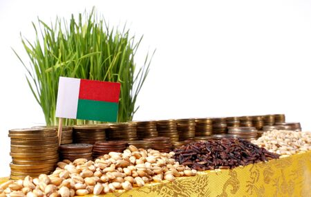 Madagascar flag waving with stack of money coins and piles of wheat and rice seeds Stock Photo
