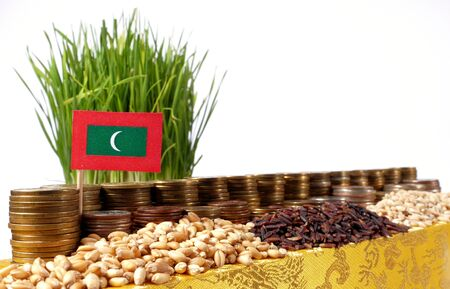 Maldives flag waving with stack of money coins and piles of wheat and rice seeds
