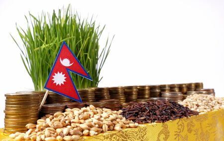 international banking: Nepal flag waving with stack of money coins and piles of wheat and rice seeds Stock Photo