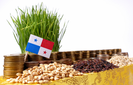 bandera de panama: Panama flag waving with stack of money coins and piles of wheat and rice seeds