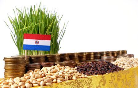 bandera de paraguay: Paraguay bandera que agita con la pila de monedas de dinero y montones de trigo y semillas de arroz