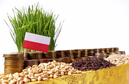 Poland flag waving with stack of money coins and piles of wheat and rice seeds