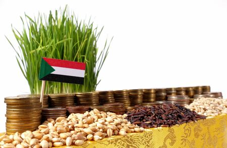 Sudan flag waving with stack of money coins and piles of wheat and rice seeds Stock Photo