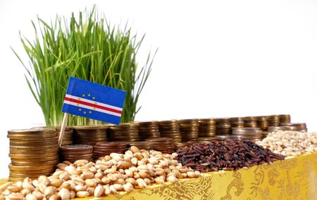 Cape Verde flag waving with stack of money coins and piles of wheat and rice seeds Stock Photo