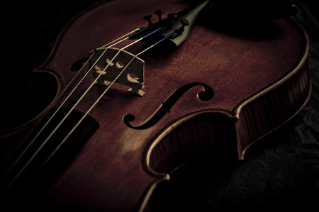 Detail of an ancient rare violin in raking light photo