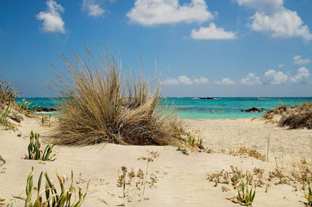 Sommer: Tropischer Strand in Elafonissi auf Kreta,Tropical beach at Kastelli in Crete Stock Photo