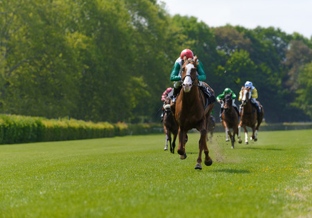 Several racehorses with jockeys during a horse race