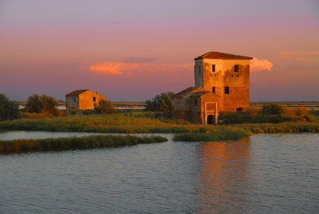 Near Comacchio is the river mouth of the river Po with huge wetlands. There are numerous bird species Stock Photo