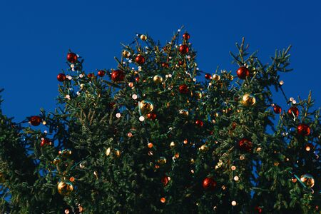knack: A richly decorated Christmas tree seen from below Stock Photo