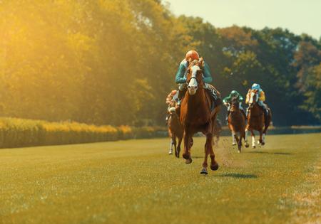 競馬中に騎手といくつかの競走馬