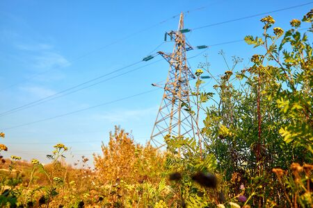 Field grass in the background of a power line mast in blur Stockfoto