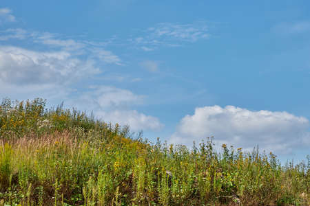 A grassy hill against a blue sky 版權商用圖片
