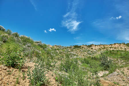 Land with sparse grass in front of a blue sky 版權商用圖片 - 163142909