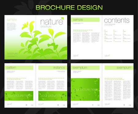 publisher: Template of brochure design with spread pages
