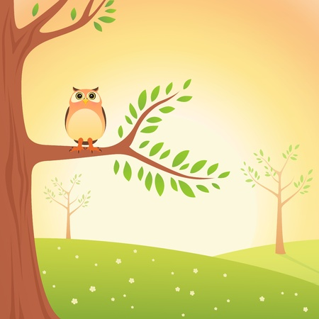 Cartoon Owl on the tree Vector