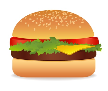 bread roll: Hamburger. Vector illustration on white background