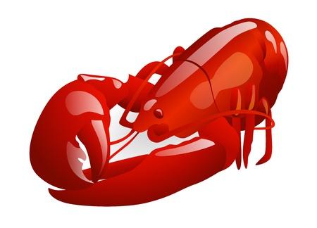 Red Lobster. Vector illustratie op een witte achtergrond