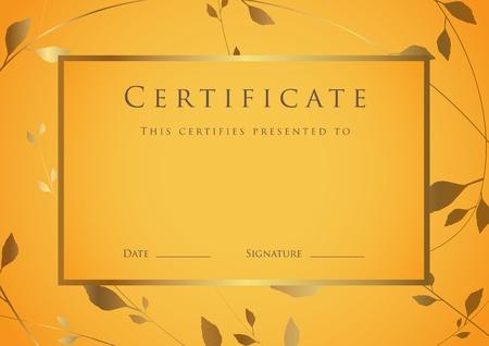 fondo de graduacion: Certificado de plantilla terminaci�n. Diploma Vectores