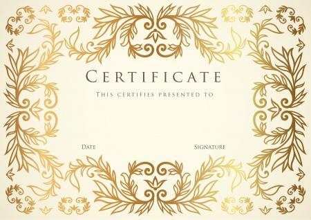 certificat diplome: Certificat de mod�le de compl�tion. Illustration
