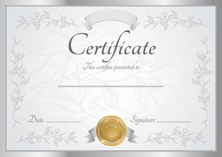 certificate: Silver certificate of completion template  Vector Illustration