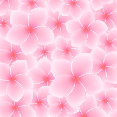 Tropical Pink Plumeria, Frangipani pattern  background Stock Vector - 21824686