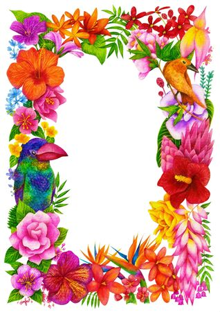 completion: Tropical Frame, Certificate or Diploma of completion (design template, flower background) with birds, floral pattern, border. Greeting card, Cover, School awards, children (kids) winner certificate