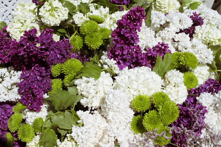 green and purple: lilac floral background with purple green white color combination Stock Photo