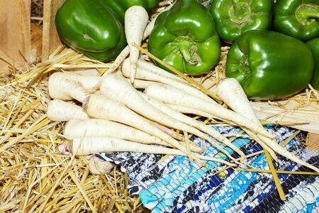 dikon: orgánicos verduras frescas fondo de alimentos. El rábano y pimientos en el heno. rábano orgánico como decoración en el festival de comida de la calle, feria de otoño.