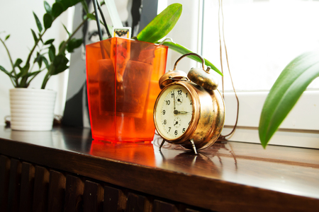 Retro clock and Morning sun with Bright, flower pot on window Stock Photo