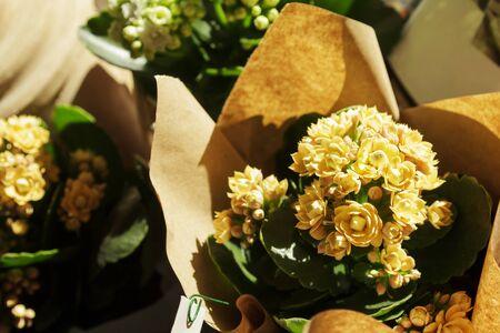 Flower arrangement. Wedding concept. Romantic gift for celebration Standard-Bild